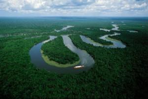Amazônia -> rio contornando a floresta amazônica.