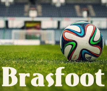 Aprenda a melhor tática do Brasfoot 2013