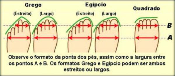 Tipos de sapatilhas de Ballet