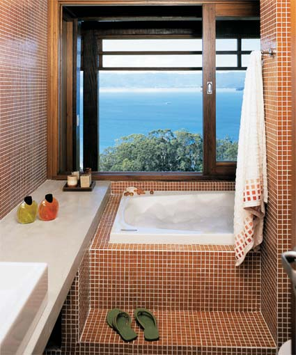Banheira em apartamento Pequeno Preço , Modelos e Dicas de Compra -> Banheiro Com Banheira E Chuveiro Planta