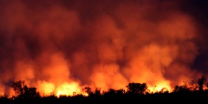 queimadas -> Grande fator para o desmatamento da Amazônia