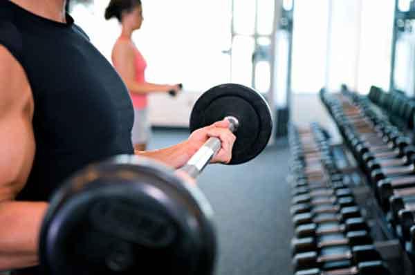 series para treinamento de musculação